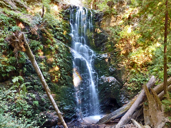 Berry Creek Falls - one of several cascades along the Berry Creek Falls Trail