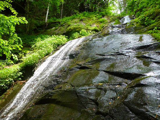 Fern Branch Falls, tucked away just off the Porters Creek Trail