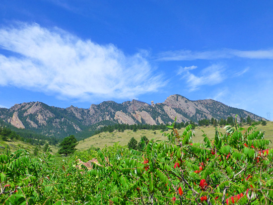 View of the Flatirons from the Bluestem Trail